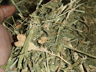 Alfalfa Hay Compress