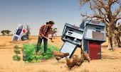 Agricultura ecològica?