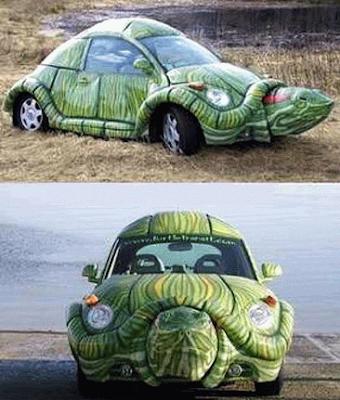turtle car