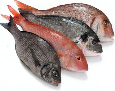 Eat Fish Every Week can reduce loss of visibility due to a  decrease of age-related macular