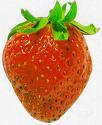une petite fraise?