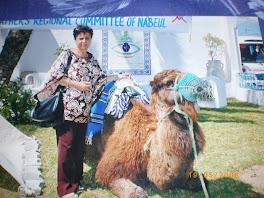 Sidi Slimane, siège de l'Ass.pour la sauvegarde de Nabeul, le dromadaire  pose pour Tata Ichtir