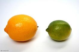 citron vert, citron jaune