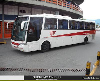 Pássaro Marron Ônibus