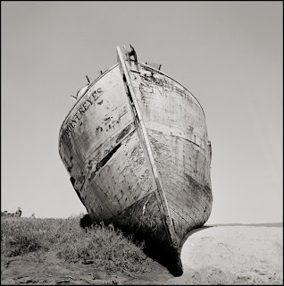 Brandon Allen Photography - Hasselblad 500cm - Black and White Photographs - Point Reyes, CA