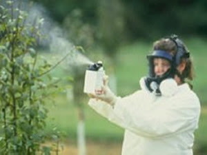 pesticide%2520spray.jpg