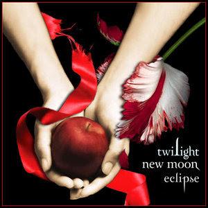 http://1.bp.blogspot.com/_i4LgKgH3tZs/SiU18r3nltI/AAAAAAAAAMQ/_dCoQ3J1gTA/s400/Twilight_New_Moon.jpg
