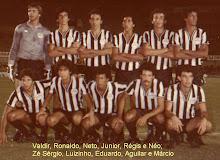 Goiânia, 1981