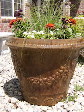Fiesta Pot