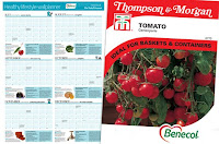 Free Wall Planner and Tomato Seeds