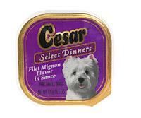Cesar Dog Food Puppy