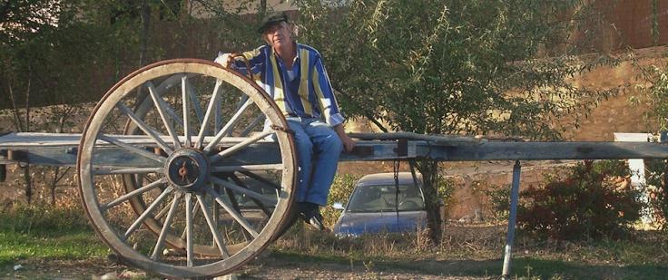 El de la mula torda