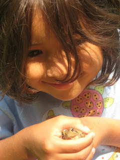 Last Child in the Woods: Raising Backyard Naturalists