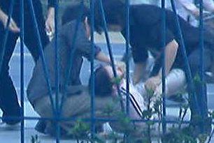 http://1.bp.blogspot.com/_i8KwgnpUYbo/TChMTM7ahTI/AAAAAAAAN7I/-ad_ib8-bIo/s1600/street+hit.JPG