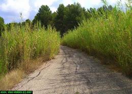 Vía Verde del Serpis