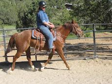 Linda Rides May