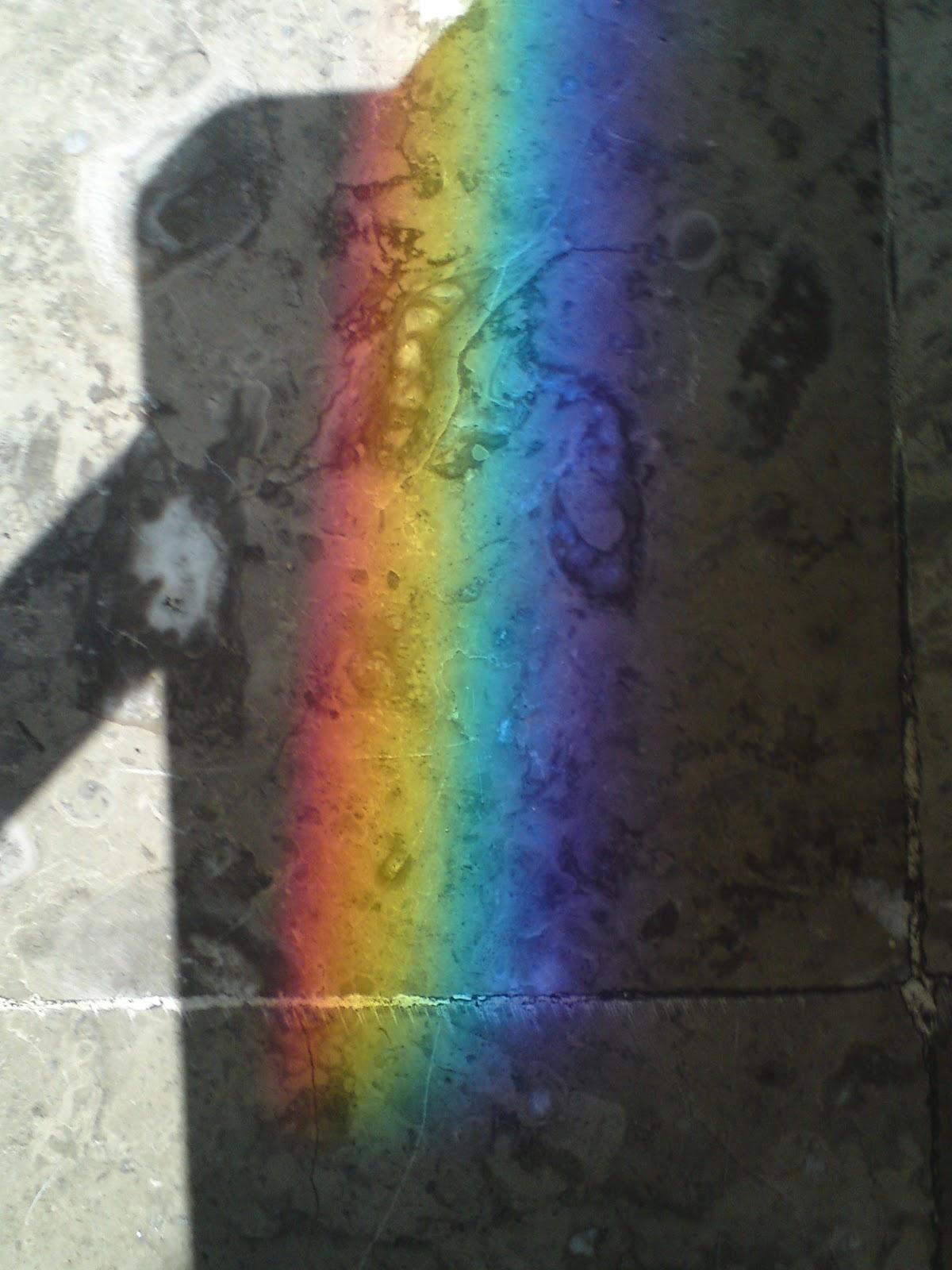 Sin sentido com n arco iris por todos lados for Puerta del sol en directo ahora