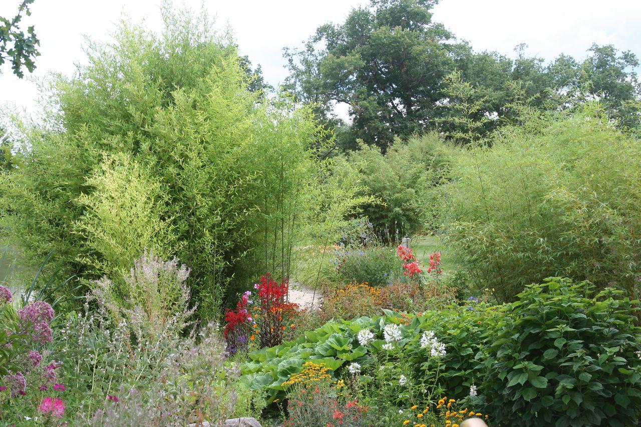 Reflet de diane aux jardins du loriot peintures et for Aux jardins