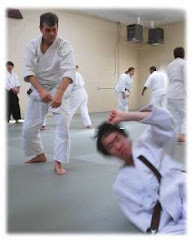 Aikido is Applicable in Everyday Life