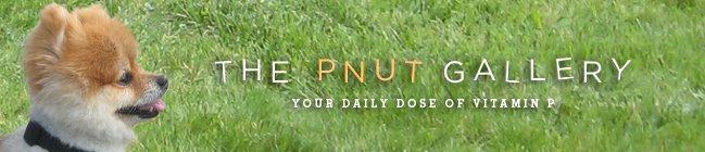 The Pnut Gallery
