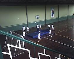 escuela de aros alemanes