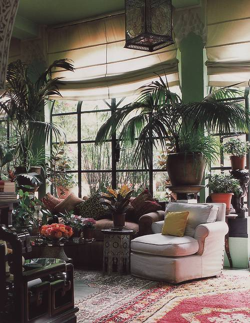 Moon to moon beautiful room for Jungle living room ideas