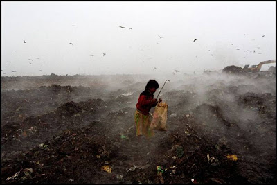Girl Child Scavenging Garbage