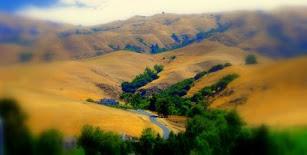 Fremont Hills