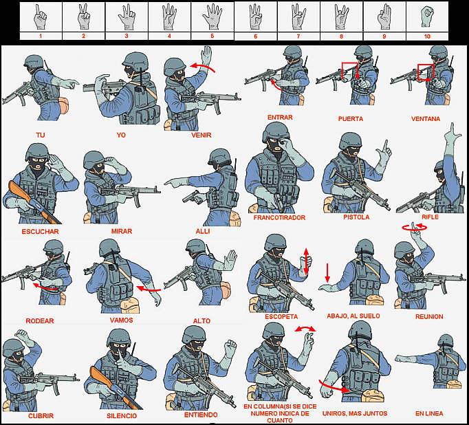 señales básicas manuales (ARTICULO 020MAG) Ordenesdn3