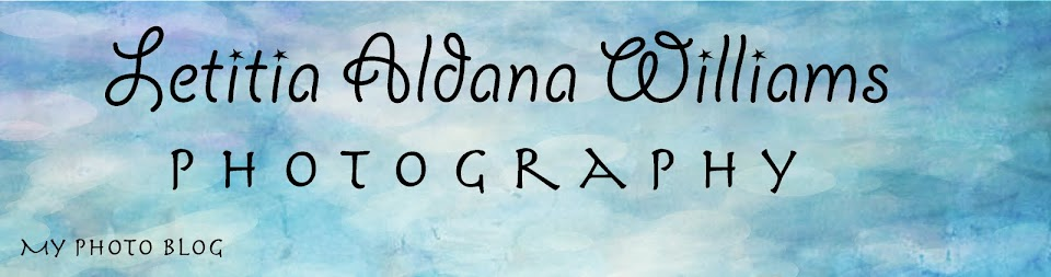Letitia Aldana Williams Photography