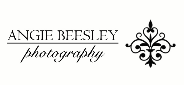 angie beesley photography