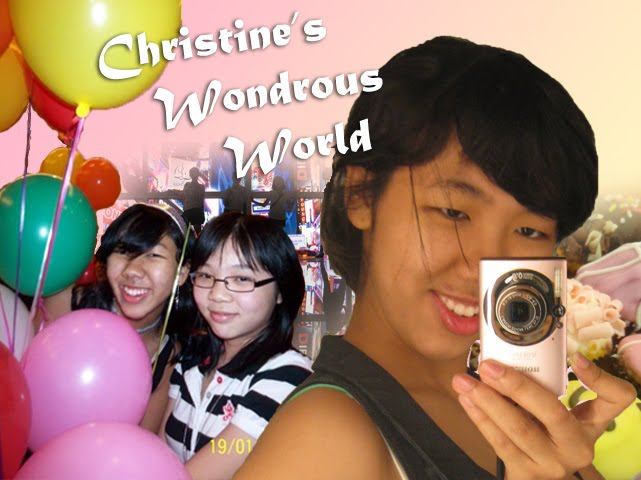 Christine's Wondrous World