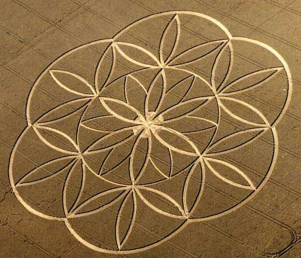 Crop Circles 2012 Flower+of+lifce+crop+circle