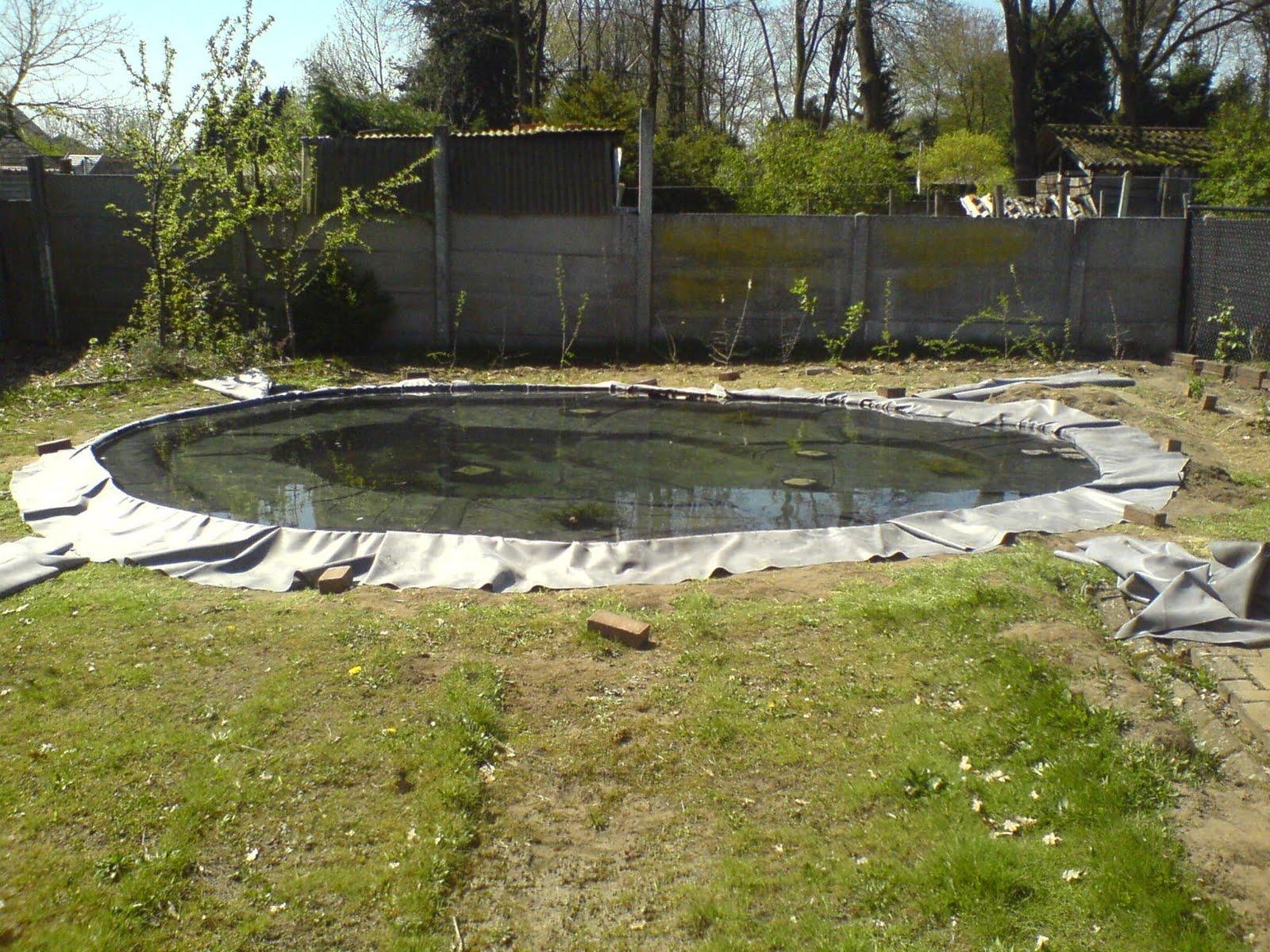 De kempentuin mei 2010 for Natuurlijke vijver zonder pomp