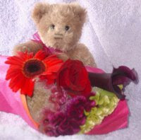 Cute Teddy Bear Blog Award from Charlotte. Thank you!