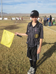 """Soccer Ref"""