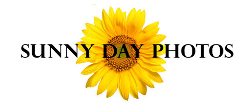 Sunny Day Photos