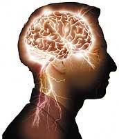 Planes de la Elite - Transhumanismo (Robotización del Cuerpo Humano) Cerebro_01