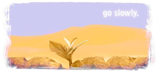 Go Slowly.