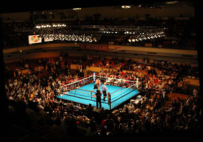 http://1.bp.blogspot.com/_iRmENiLBx3g/S60JDDP1i5I/AAAAAAAACYI/fC77JSoZOkU/s400/SkySports-Fight-Night1.jpg