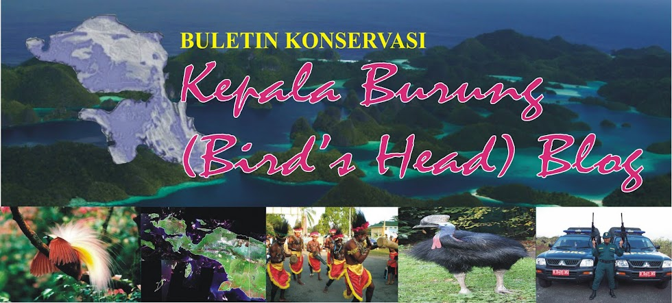 Buletin Konservasi Kepala Burung (Bird's Head) Blog