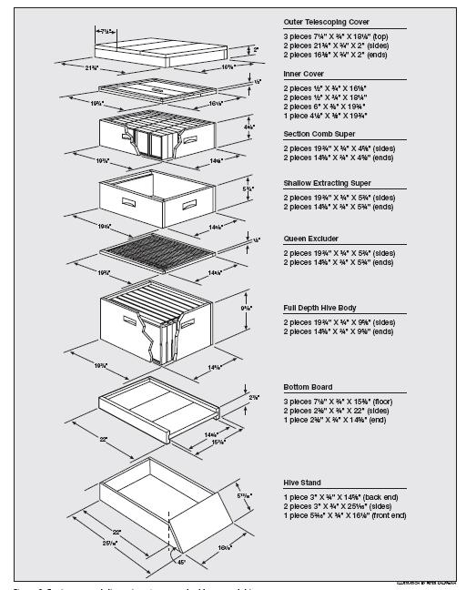10 Frame Bee Hive Plans