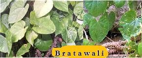 Bratawali