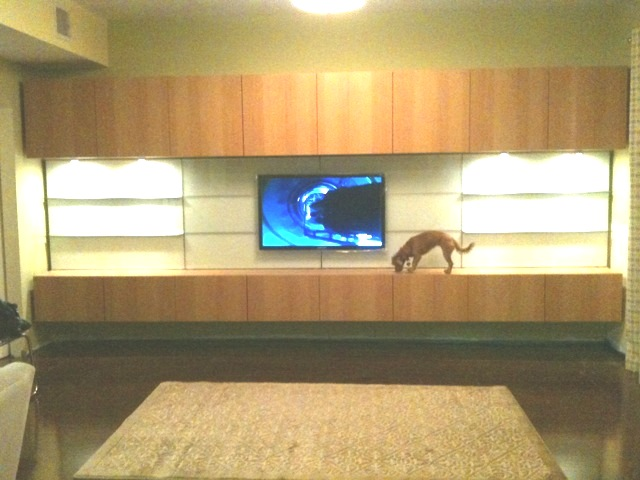 Floating Wall Entertainment Center