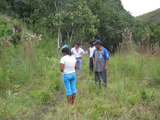 Construccion de estanques autolimpiables for Construccion de estanques acuicolas