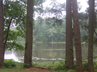 A view from our picnic table looking out at Lake Raven.