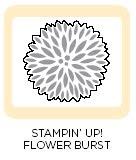 Promotion du 13 au 18 octobre 2009 Flower+Burst+Embosslit