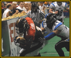 Albany Firebirds - Arena Football