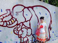 喵喵與大象