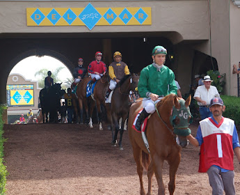 Tunnel at Del Mar